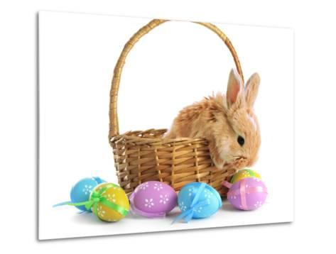 Fluffy Foxy Rabbit in Basket with Easter Eggs-Yastremska-Metal Print