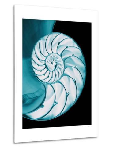 Nautilus Shell-Babar760-Metal Print
