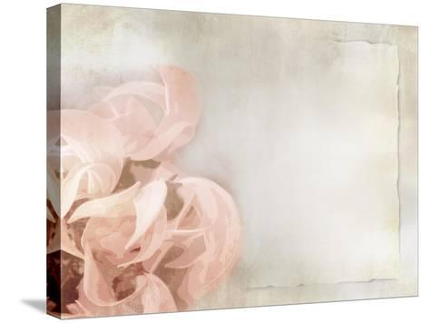 Flower Background in Light Vintage Style on Torn Old Paper Sheet-one AND only-Stretched Canvas Print