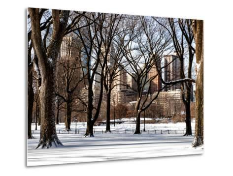 Winter Snow in Central Park View-Philippe Hugonnard-Metal Print