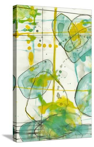 Splish Splash I-Jennifer Goldberger-Stretched Canvas Print