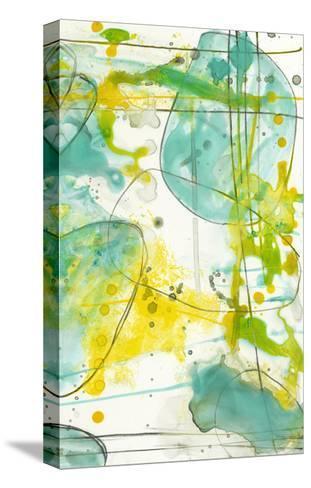 Splish Splash II-Jennifer Goldberger-Stretched Canvas Print