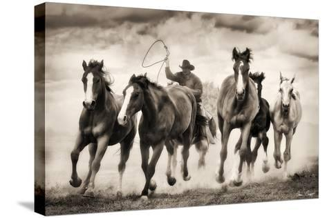 The Chase I-David Drost-Stretched Canvas Print