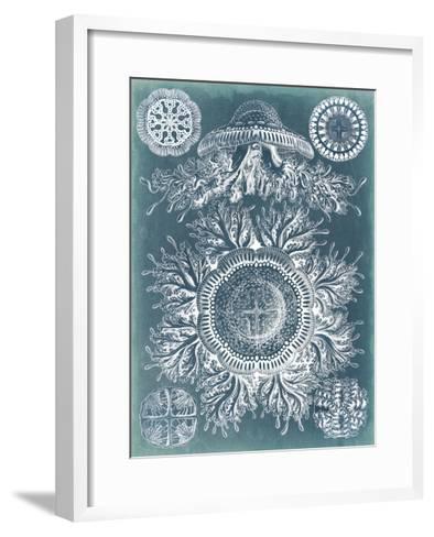 Sealife Blueprint I-Vision Studio-Framed Art Print