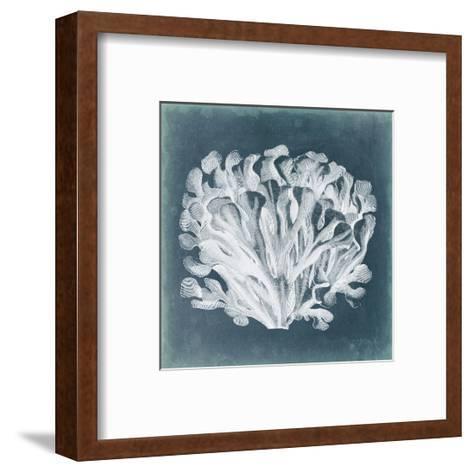 Azure Coral III-Vision Studio-Framed Art Print