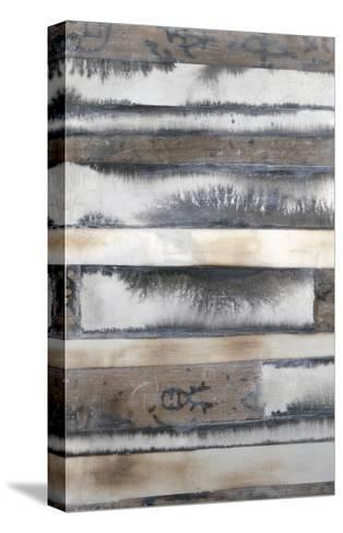 Earth and Smoke I-Jennifer Goldberger-Stretched Canvas Print