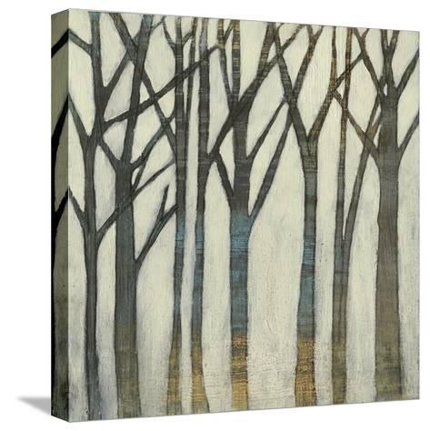 Birch Line I-Jennifer Goldberger-Stretched Canvas Print