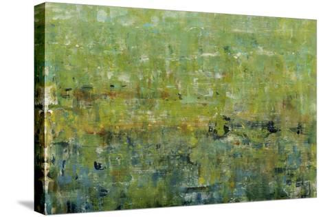 Opulent Field I-Tim O'toole-Stretched Canvas Print