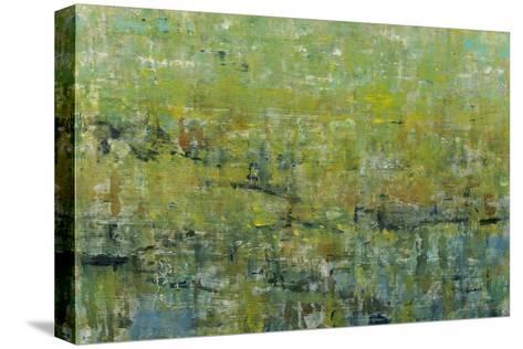 Opulent Field II-Tim O'toole-Stretched Canvas Print