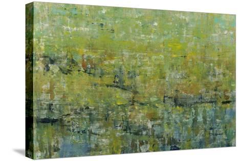 Opulent Field II-Tim O'toole-Stretched Canvas Print