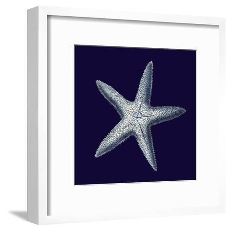 Indigo Shells IV-Vision Studio-Framed Art Print