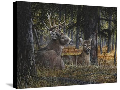 Autumn Royalty-Kevin Daniel-Stretched Canvas Print