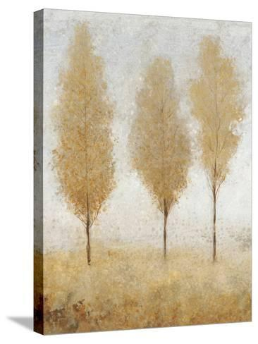 Autumn Springs I-Tim O'toole-Stretched Canvas Print