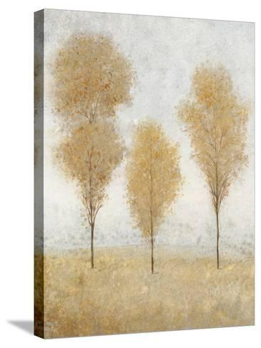 Autumn Springs II-Tim O'toole-Stretched Canvas Print