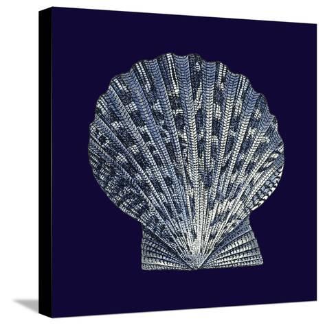 Indigo Shells VIII-Vision Studio-Stretched Canvas Print