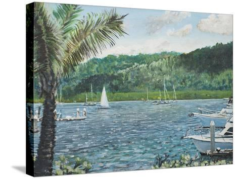 Cairns, Australia-Vincent Booth-Stretched Canvas Print