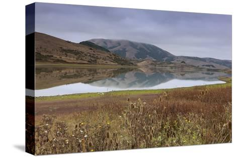 Marin County Landscape in Fall-Henri Silberman-Stretched Canvas Print