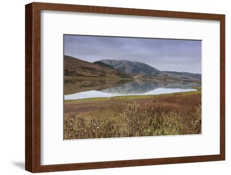 Marin County Landscape in Fall-Henri Silberman-Framed Art Print
