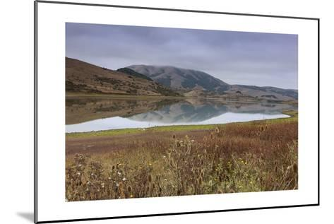 Marin County Landscape in Fall-Henri Silberman-Mounted Photographic Print
