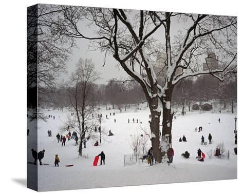 Prospect Park in Snow-Henri Silberman-Stretched Canvas Print