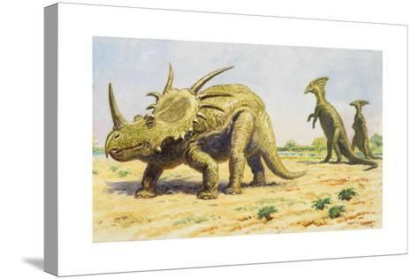 Both the Styracosaurus (Right) and the Parasaurolohus Were Herbivores-Charles R. Knight-Stretched Canvas Print