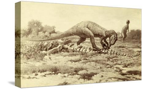 Painting of Two Tyrannosaurs Rex; One Eats Brontosaurus Remains-Charles R. Knight-Stretched Canvas Print