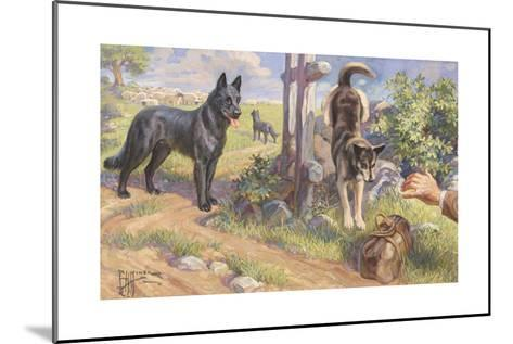 Groenendael and Malinois Dogs Work as Herders and Couriers-Edward Herbert Miner-Mounted Giclee Print