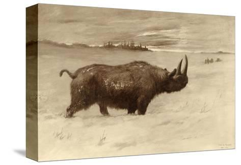 A Painting of a Woolly Rhinoceros Tichorhinus of the Pleistocene Age-Charles R. Knight-Stretched Canvas Print
