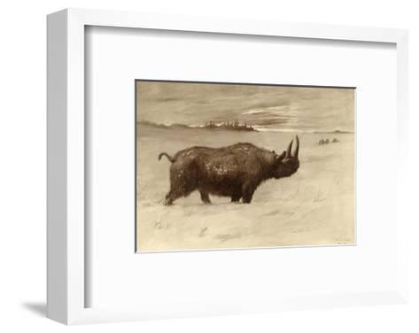 A Painting of a Woolly Rhinoceros Tichorhinus of the Pleistocene Age-Charles R. Knight-Framed Art Print