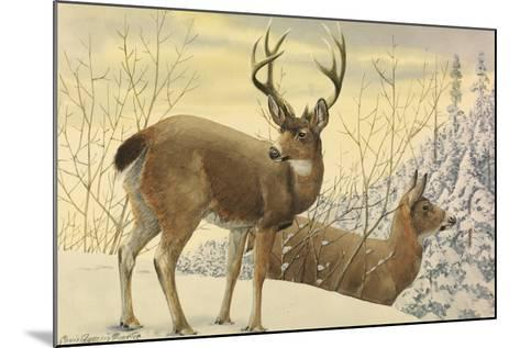 A Painting of Two Black-Tailed Deer Standing in the Snow-Louis Agassi Fuertes-Mounted Giclee Print