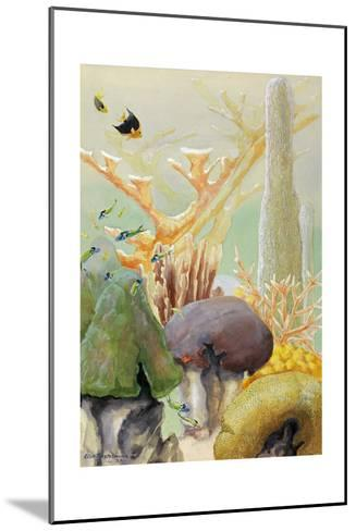 Fish Swim Between Coral Colonies Formed over the Centuries-Else Bostelmann-Mounted Giclee Print