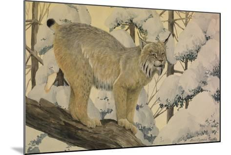 A Painting of a Canada Lynx Standing on Fallen Tree Trunk-Louis Agassi Fuertes-Mounted Giclee Print