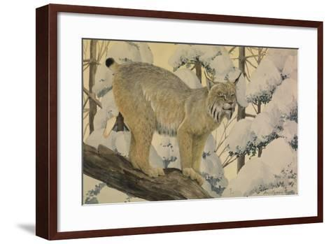A Painting of a Canada Lynx Standing on Fallen Tree Trunk-Louis Agassi Fuertes-Framed Art Print