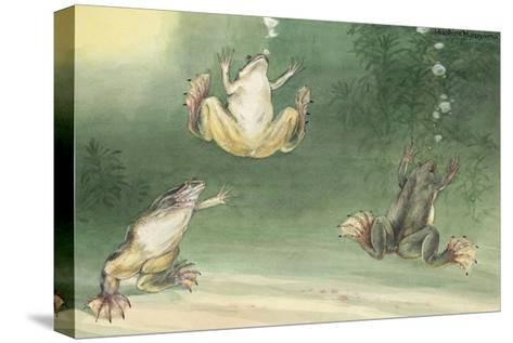 The Aglossa Frogs are Aquatic, Coming Up for Air Every Few Minutes-Hashime Murayama-Stretched Canvas Print