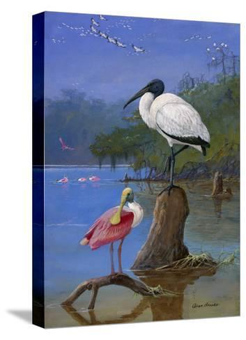 A Wood Ibis Perches with a Roseate Spoonbill on Dead Tree Limbs-Allan Brooks-Stretched Canvas Print