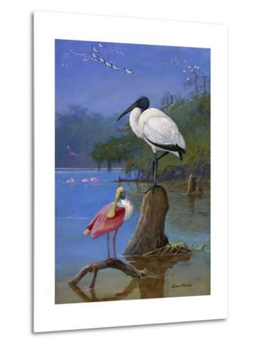 A Wood Ibis Perches with a Roseate Spoonbill on Dead Tree Limbs-Allan Brooks-Metal Print