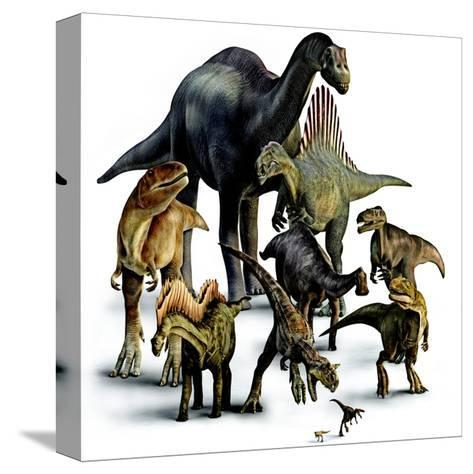 A Composite of Dinosaurs That Lived in the Southern Hemisphere-Pixeldust Studios-Stretched Canvas Print