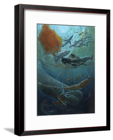 Marine Animals of the Kaikoura Canyon, a Trench Off South Island-John Dawson-Framed Art Print