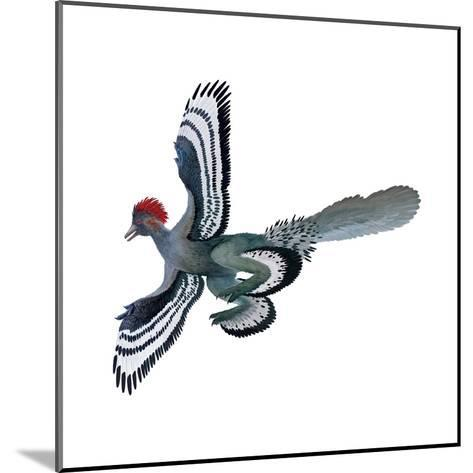 Color Depictions in an Anchiornis Feathered Dinosaur-Xing Lida-Mounted Giclee Print