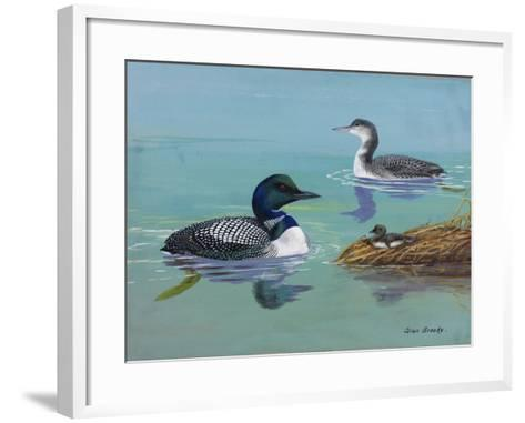 A Painting of Three Loons at Different Life Stages-Allan Brooks-Framed Art Print