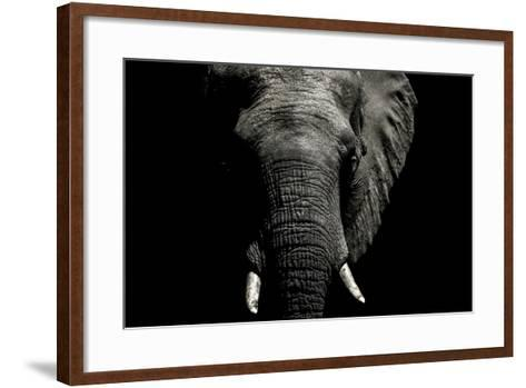 The Wrinkled Trunk and Face of an African Elephant-Jason Edwards-Framed Art Print