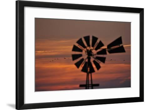 A Silhouetted Windmill and a Flock of Migrating Sandhill Cranes at Sunset-Michael Forsberg-Framed Art Print