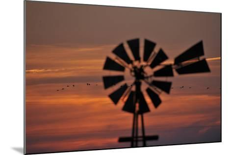 A Silhouetted Windmill and a Flock of Migrating Sandhill Cranes at Sunset-Michael Forsberg-Mounted Photographic Print