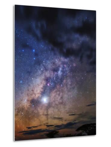 The Milky Way and Planet Venus in the Evening Sky over Silhouetted Tree Tops-Babak Tafreshi-Metal Print