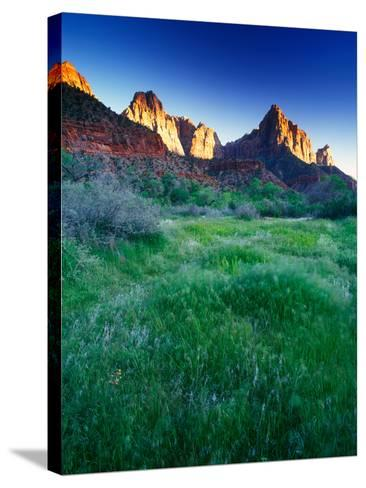 Lush Spring Meadows at the Foot of Rock Formations in Zion National Park-Keith Ladzinski-Stretched Canvas Print