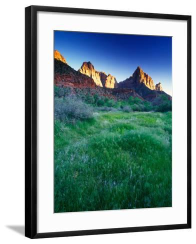 Lush Spring Meadows at the Foot of Rock Formations in Zion National Park-Keith Ladzinski-Framed Art Print