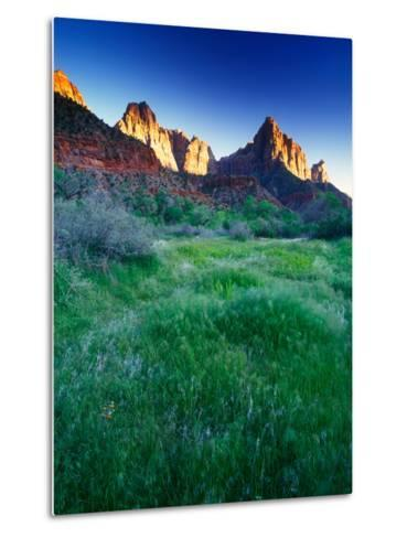 Lush Spring Meadows at the Foot of Rock Formations in Zion National Park-Keith Ladzinski-Metal Print