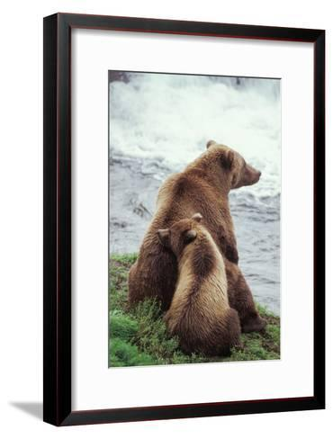 A Grizzly Bear Cub Nuzzles its Mother by a Waterfall-Tom Murphy-Framed Art Print