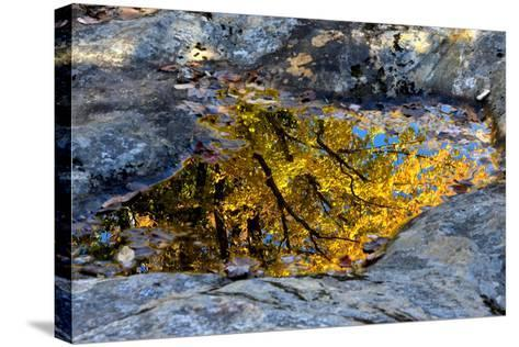 Autumn Colors Reflected in Pools of Water on a Rocky River Bank-Robbie George-Stretched Canvas Print
