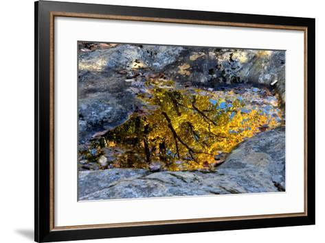 Autumn Colors Reflected in Pools of Water on a Rocky River Bank-Robbie George-Framed Art Print